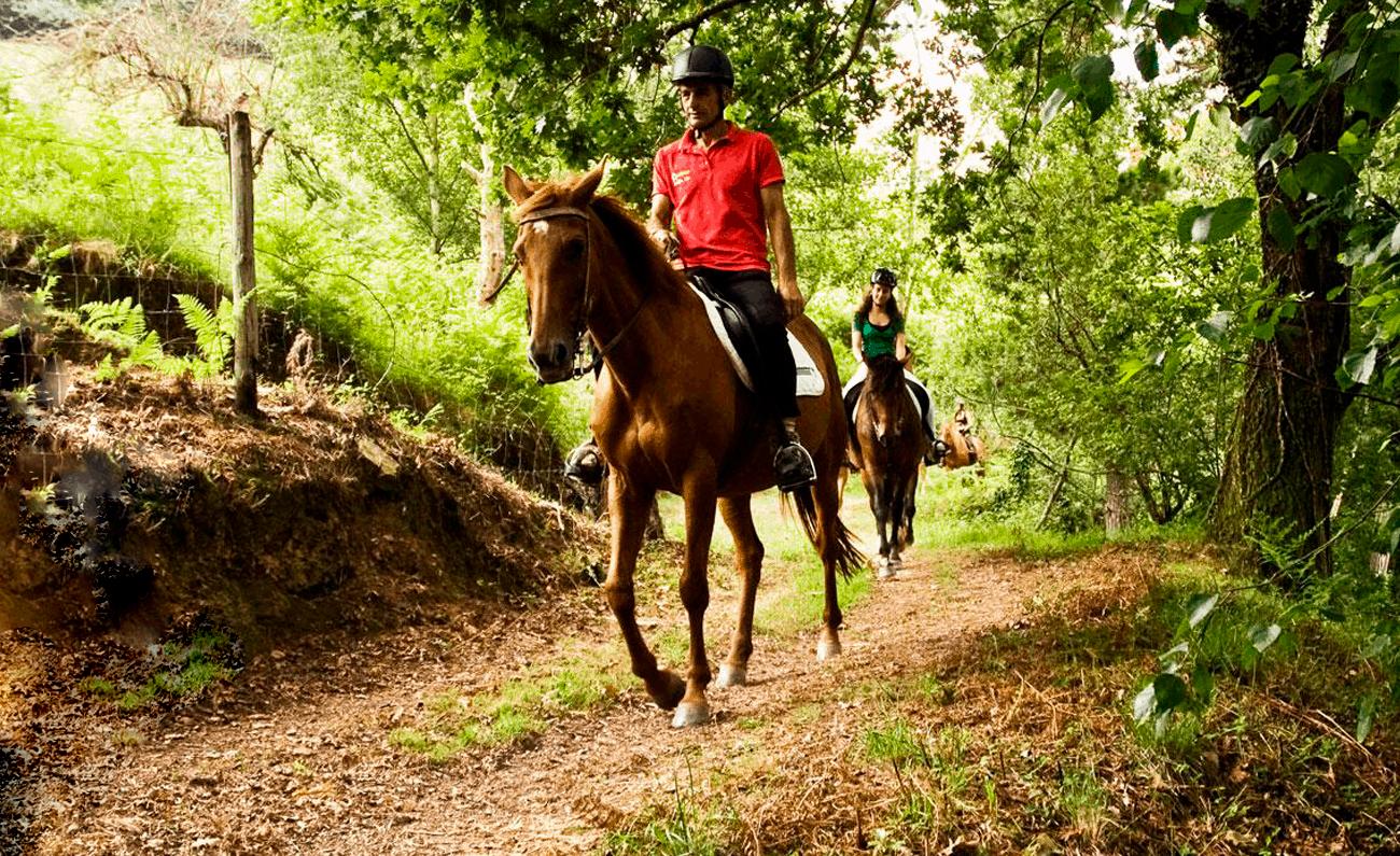 rutas a caballo villena